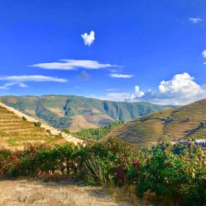 Through the Fire – Retreat Experience In Douro Valley